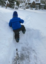 After the big snowstorm last month, I wanted to get a head-on shot of my son climbing the snow. But he wouldn't wait for me to get ahead of him. All I could get off was this one from the back. The summit shot works, right?