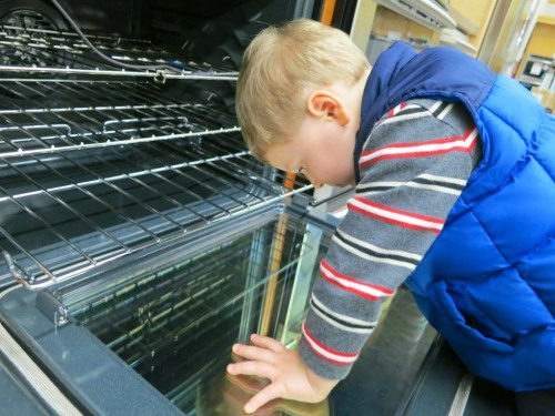 While on a family field trip this weekend to replace our kaput dishwasher, our son suddenly lost interest in the dishwasher section in favor of a reflective oven door.   This innocent moment set off a cascading series of events that almost derailed my mission!