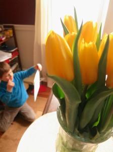 Tulips Spark Creation