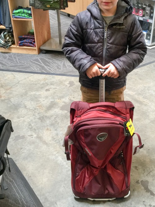 Traveling with kids is no walk in the clouds. Their bags had better be able to handle whatever bumps and bruises come their way. I say don't skimp when it comes to buying their luggage…