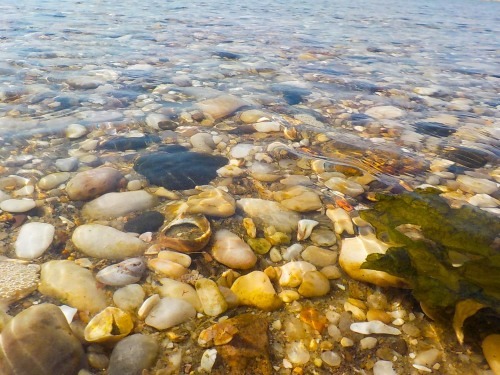 A Thousand Warm Stones
